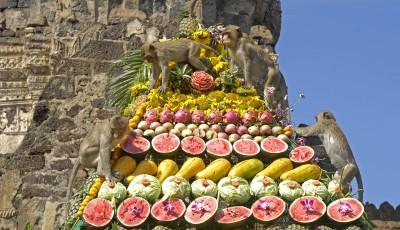 Festivalul maimuţelor în Thailanda