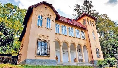 muzeu Ciucea