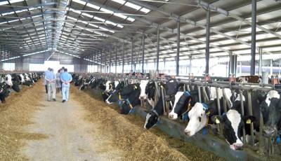 fonduri fermieri