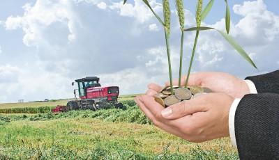 organizatii agricultura