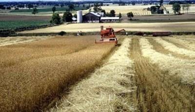 sprijin agricultura