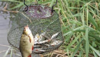 cupa martisor pescuit