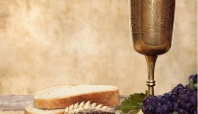 paine vin