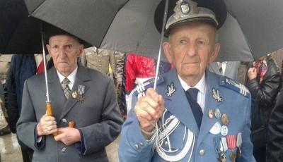 veterani Cluj