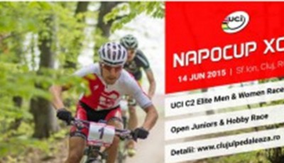 NapoCup 2015