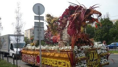 caravana florilor
