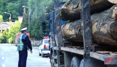 confiscari material lemnos