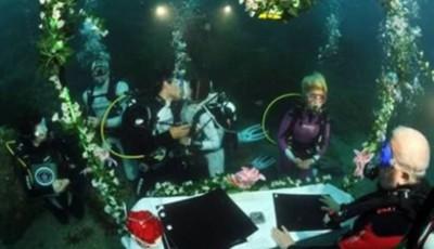 nunta subacvatica