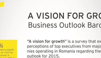 Infografic, A vision for growth