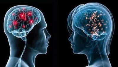 creier masculin feminin