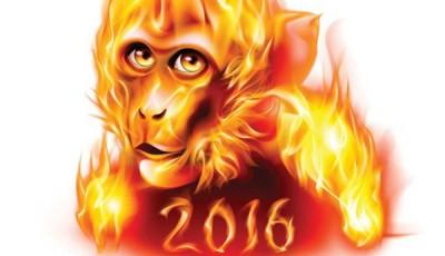2016 Anul Maimutei de Foc