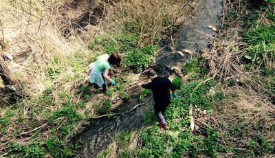 Acţiune de ecologizare la Cheile Turzii