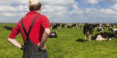 subventii fermieri APIA