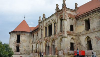 Zilele castelului Bontida (6)