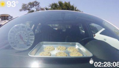 au copt biscuiti in masina