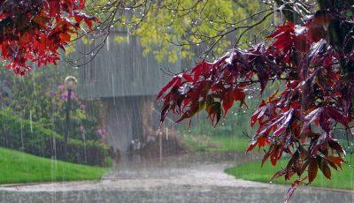 ploi-de-toamna