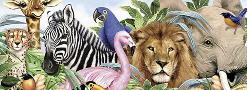 ziua-internationala-a-animalelor