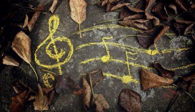 toamna-muzicala