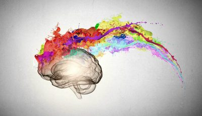 creier-arta
