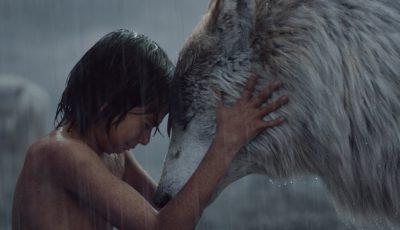 mowgli fetita
