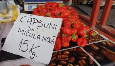 capsuni SM pret