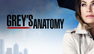 serial grey s anatomy 2