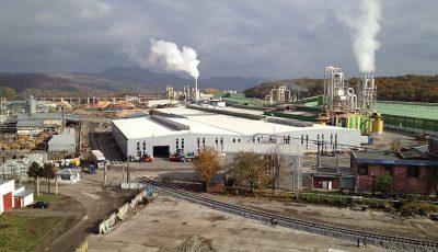 fabrica Kastamonu, Reghin