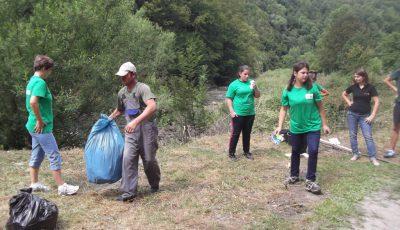 actiuni ecologizare oradea