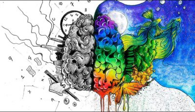 emisfere cerebrale desen