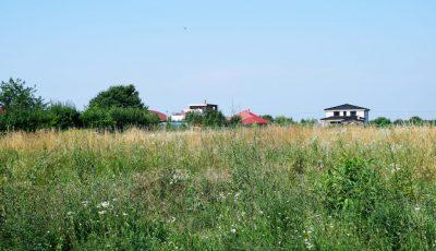 terenuri iarba