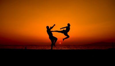 antrenor de arte martiale