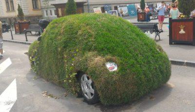 masina verde brasov