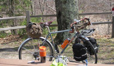 bicicleta sub copac