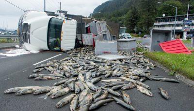 camion peste rasturnat