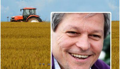 colaj ciolos agicultura