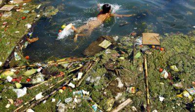 lacul victoria poluare