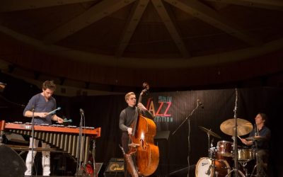 Martin Pater Trio (Polonia) au fost desemnați câștigătorii Sibiu Jazz Competition 2018